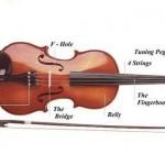 Gia sư dạy đàn violin chất lượng cao